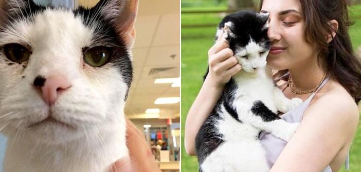 長い間、引き取り手が現れなかった19歳の老猫。運命的な出会いを果たし、家族みんなに最高の幸せを届ける!