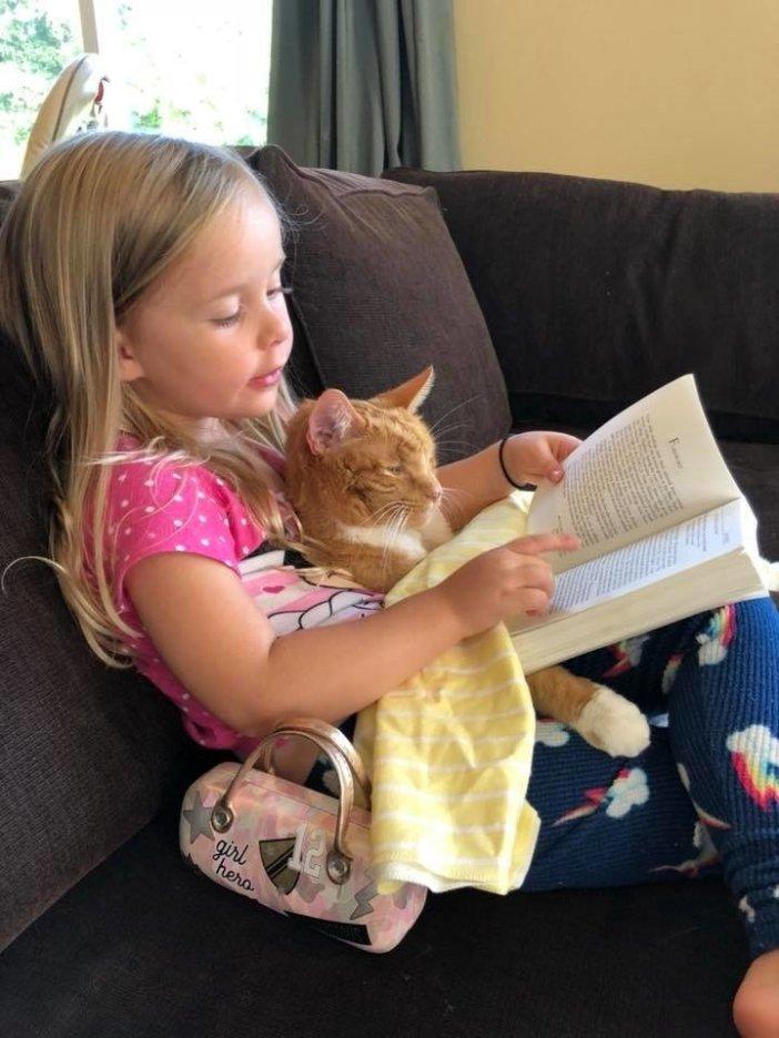 仲良しな女の子と猫