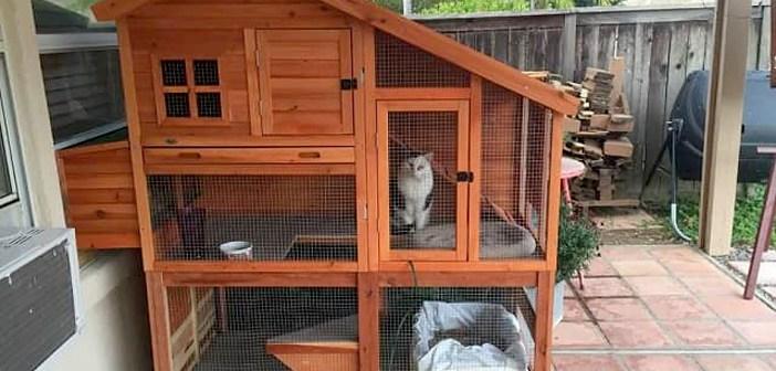 ニワトリ小屋を猫の家にする