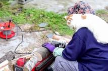 薪割りと猫