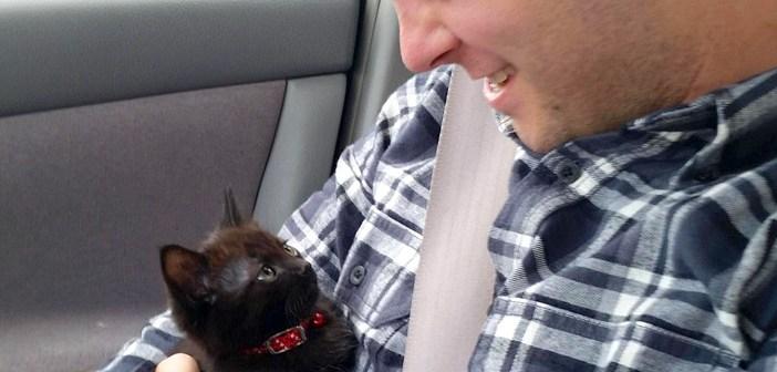 見つめ合う男性と子猫