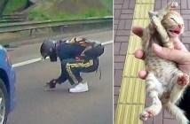 子猫を助け出した男性