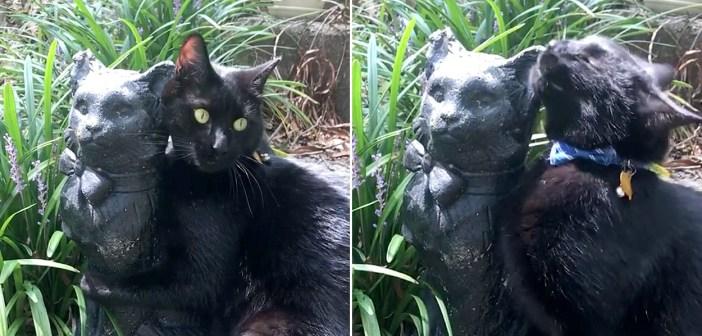 猫の置物に恋をした猫