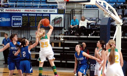 Lady Vandals come up short in title game