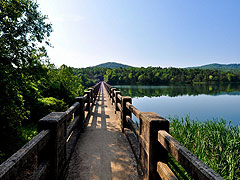 Explore Eureka Springs Trails