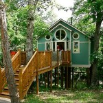 The Grand Treehouse Resort