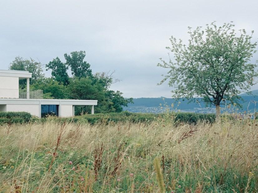 house-vineyard-zurich-switzerland-think-architecture-_dezeen_2364_col_19