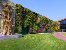Итальянский сад попал в Книгу рекордов Гиннеса