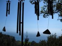 Музыка польских степей зазвучала для любителей природы