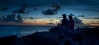 Свет, цвет и пластиковые рыбки объединяют мадридцев