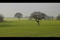 Древние вересковые пустоши и известняковые ландшафты будут сохранены в Великобритании