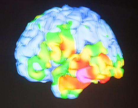 Инновационный метод лечения черепно-мозговых травм разработан в ЕС