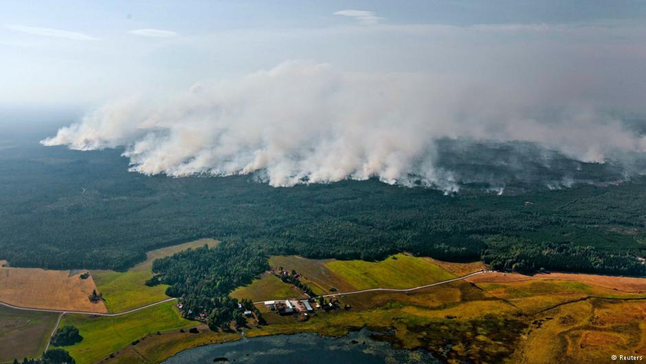 Италия и Франция помогут победить лесные пожары в Швеции