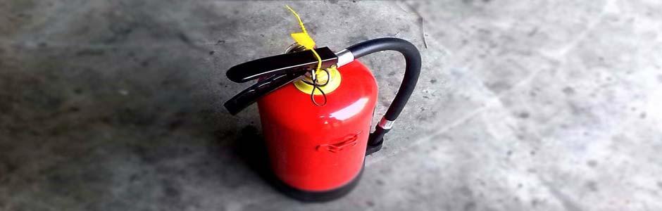 Во французском Лизье летающих муравьев приняли за пожар