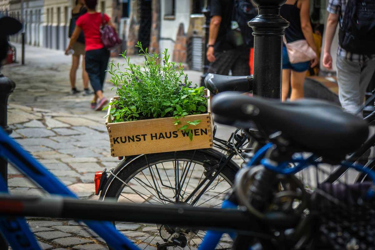 Копенгаген и Вена оказались самыми «здоровыми» столицами Европы