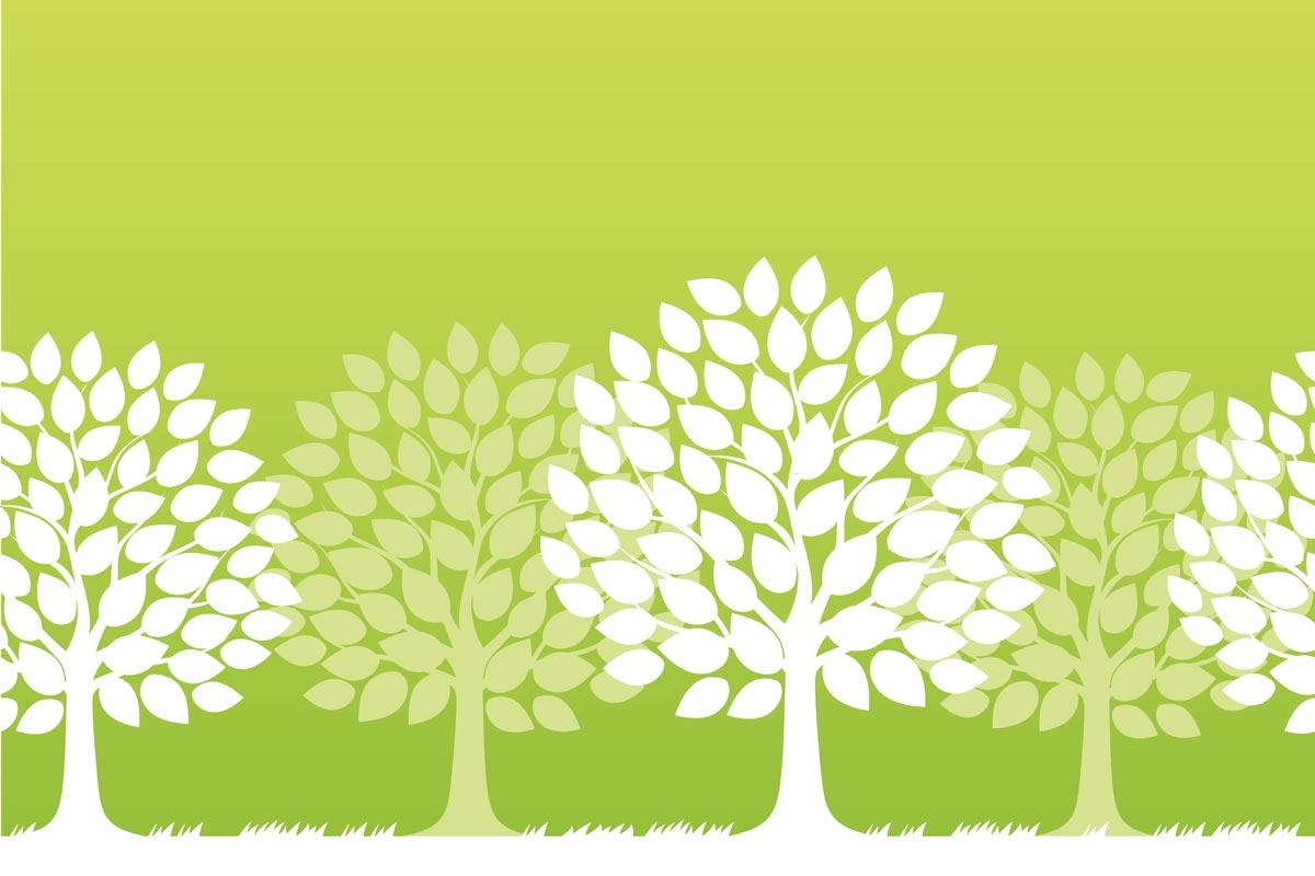 В румынском городе появятся «городские деревья», которые будут улучшать качество воздуха