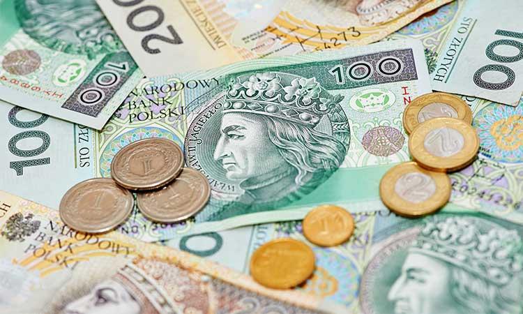 zloty moeda da polonia