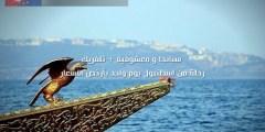 رحلة سبانجا ومعشوقية فصل الربيع والصيف 2021