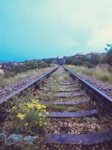 Grass grew over the railroad tracks near Sevastopol, the largest industrial city of the Ukrainian peninsula, as Crimea's economy slowed to a standstill after the Russian occupation. June 2015 (Image: Twitter)