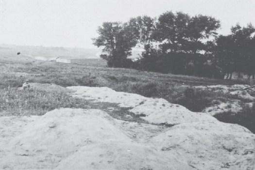 A mass grave of the starved to death in Kharkiv province. The Holodomor in Ukraine, 1933. (Image: fundholodomors.org.ua)