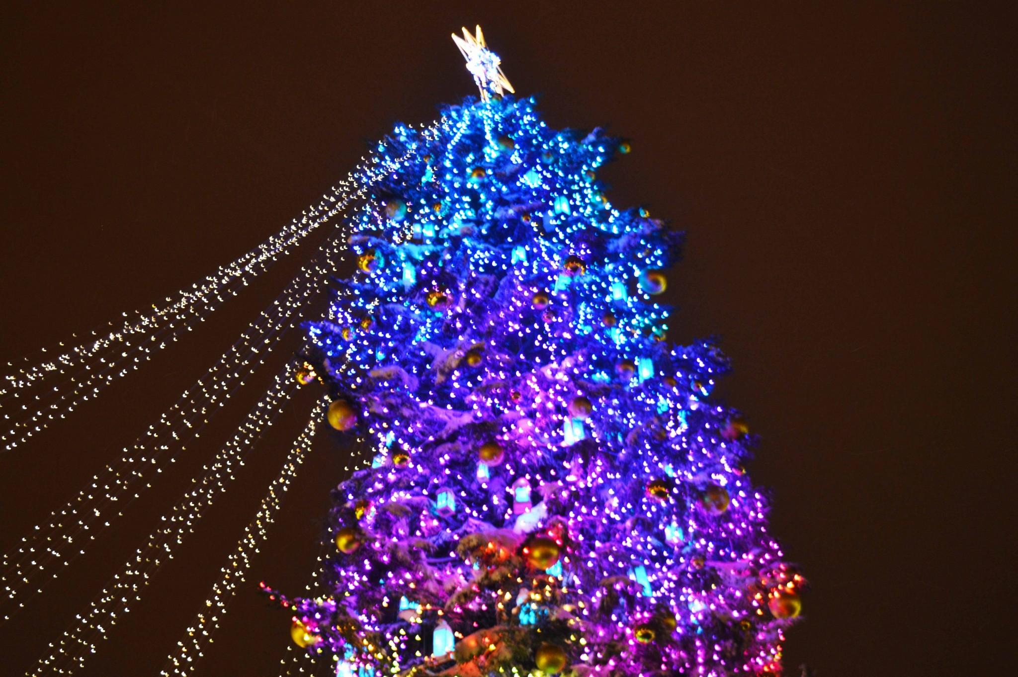 Ukraines Main Christmas Tree Lit Up For The Winter Marathon