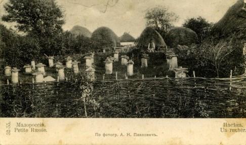 Beehouses