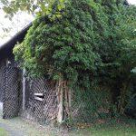 maison-thiefosse-3