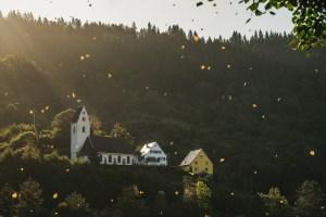 Dorf_Herbst_Laub_Sonnenuntergang