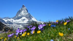 Matterhorn_Alpen_Alm