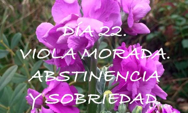 DÍA 22. VIOLA MORADA (ALHELÍ). ABSTINENCIA Y SOBRIEDAD.