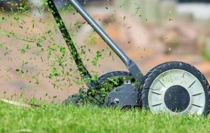 Claves para desbrozar y cortar hierba alta