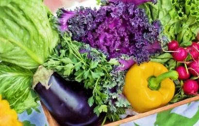 Compra tus verduras más frescas y sabrosas de forma online