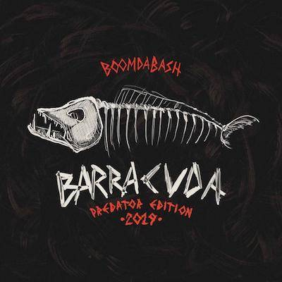 barracuda_28172442.jpg