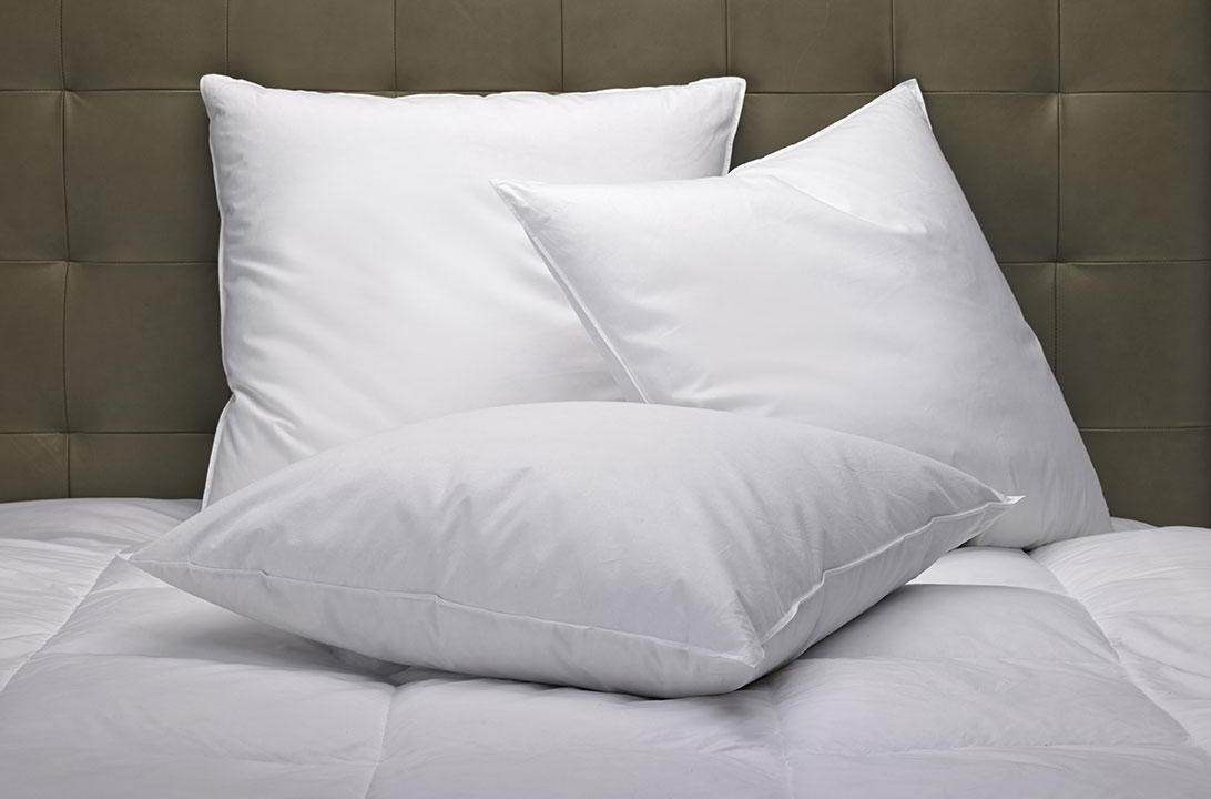 Feather  Down Pillow Marriott Hotel Store