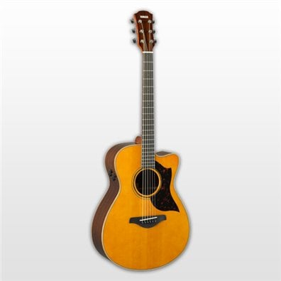 acoustic guitars guitars basses