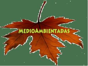 medioambientadaslogo21-300x225