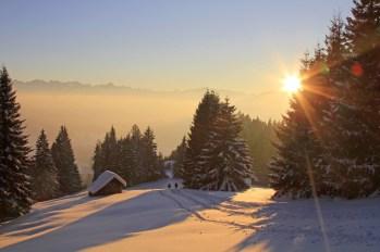 Winter - Traumtag - Sonnenuntergang - Pulverschnee - Sport - Ski