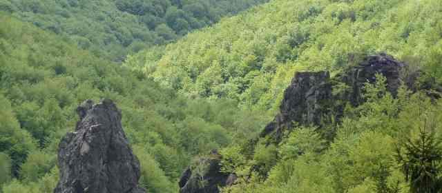 Zacharovanyy Kray Wilderness