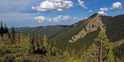 Gorgany Wilderness
