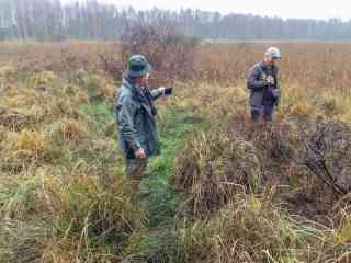 Koenigsbruecker Heide Wilderness 2014 818009