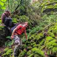 IUCN and European Wilderness Quality and Audit System – commonalities and differences