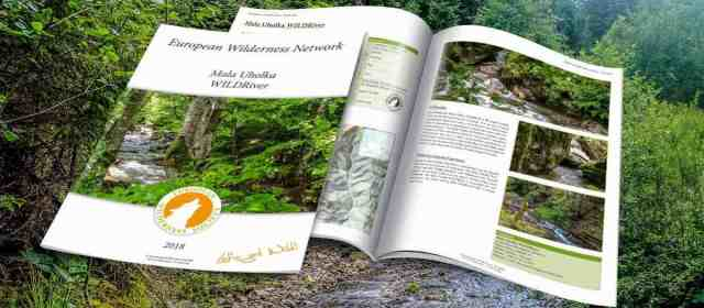 WILDRivers in Ukraine – New Publications