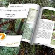 Chornyy Dil Wilderness – New Publication!