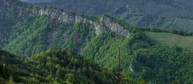 Romanian Fagaras Old-growth forest is still threatened