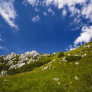 National Park Risnjak – a new potential Wilderness