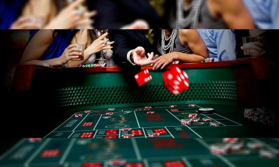 Evolution Technology Resources to develop completely automated casino and sportsbook