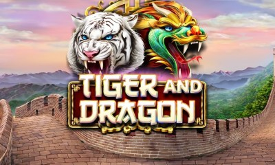 Tiger and Dragon. Fight for the treasure!
