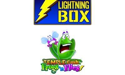 Lightning Box - Frogs 'n Flies