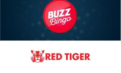 Red Tiger live with Buzz Bingo