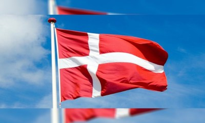 Denmark's Spillemyndigheden Regulatory Agency Shuts Down 25 Illegal Gambling Sites in 2019